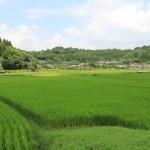 東 大海・達子さん 息をのむほどキレイな農村風景