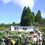 霧島連山のふもとで食農体験 体験会場~のぼる農園