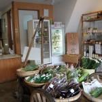 中津野やさい販売所 懐かしい荷車の上には新鮮野菜がたくさん!