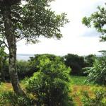 農家民宿 野水の里東シナ海を望む景色