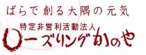 NPO法人ローズリングかのや 大隅のまん中に位置する鹿屋市で、日本一を誇れる「かのやばら園」を拠点に、各地の方々と手をつなぎ合って「大隅の元気」をめざし奮闘中。