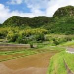 台風一過。藤本、尾木場、川上の集落では田植えの真っ最中です。